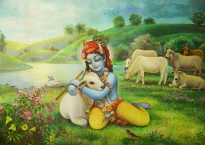 this image for krishna with cow images