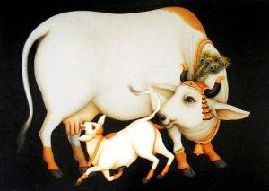 हमें ज्यादा दूध चाहिए या अच्छा दूध चाहिए? | Cow | Milk | Sahiwal Cow |